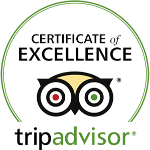 Wine Tours Gone South | A Certificate of Excellence from Trip Advisor